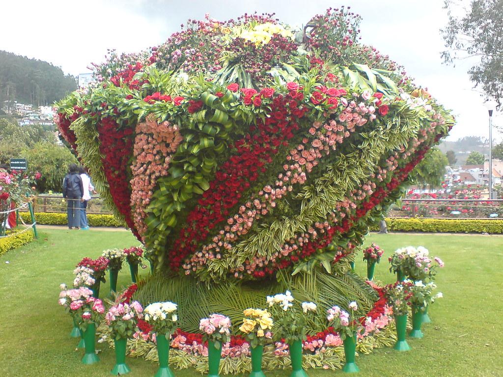 flower show in ooty